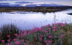 Island Panorama_© Ragnar Th Sigurdsson (Iceland.is)