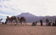 Wadi Rum 8_© Jordan Tourism Board