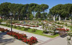Madrid. Rosaleda del Parque de Rosales