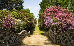 Stairs in Hever Gardens, Hever Castle & Gardens, Hever, Edenbridge, Kent, England, United Kingdom