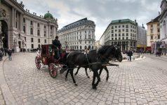 Wien Fiaker (c) Pixabay