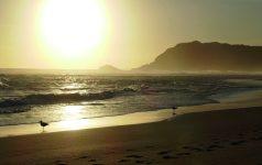 Südafrika_Martin_P1000484