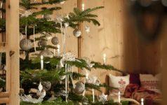 Weihnachtsbaum © Sonnenhotel Adler