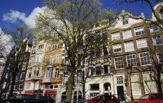 Amsterdam (1) © M-tours Live Reisen GmbH